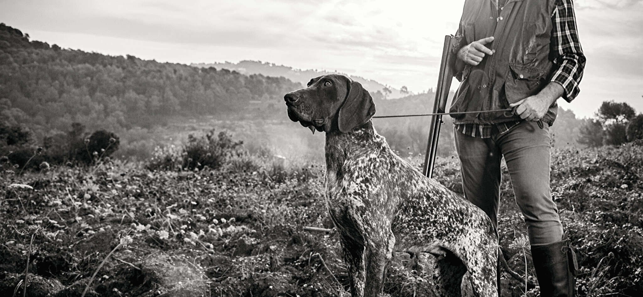 Hunters Natural Working Dog Food For Active Gun Dogs, Sheep Dogs and Agility Dogs